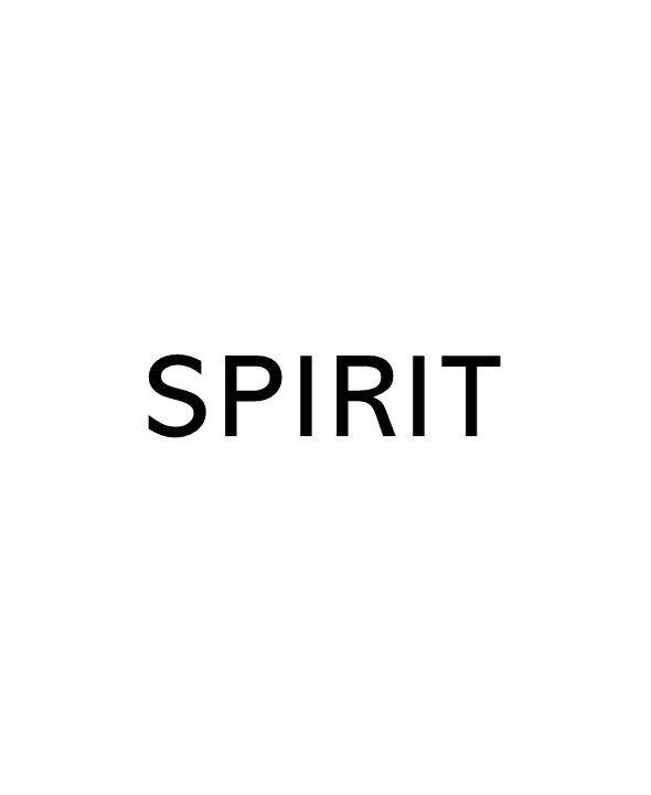 title text that says Spirit