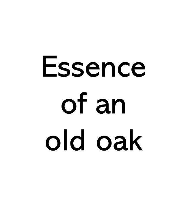 Title text that says Essence of an old oak